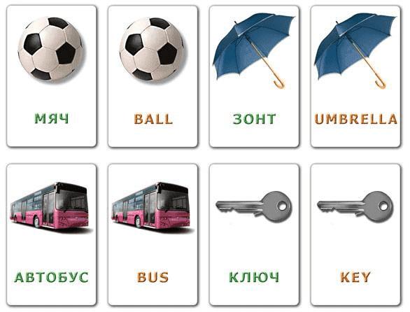 Kartochki Выучить английский с помощью Андроид? Легко! Обзор Tinycards.